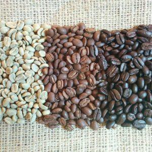CAFÉS ÉQUITABLES ET BIOLOGIQUES DOWN EAST